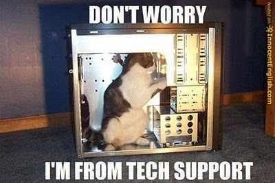 tech-support-funny-cat-pic.jpg